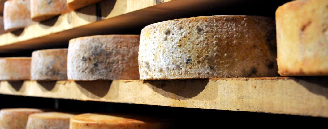 Shelves of Farmstead Brindisi Fontina